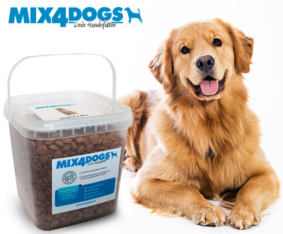 Mix 4 Dogs